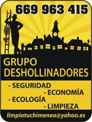 GRUPO DESHOLLINADORES
