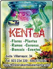 KENTYA FLORES Y PLANTAS